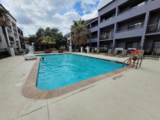 Nice size pool