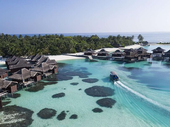Aerial view of Over Water Bungalows with Pontoon