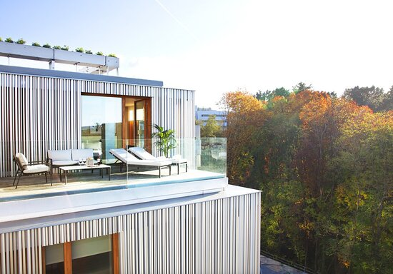 Terrace Over The Forest