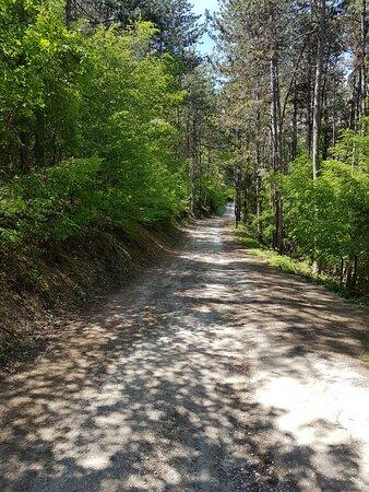 Obzor, Bulgarien: Part of the eco-path