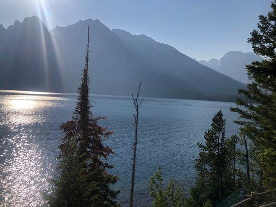 Half Day Grand Teton Wildlife Safari Tour: Jenny Lake
