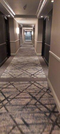 Fotos hotel kimpton