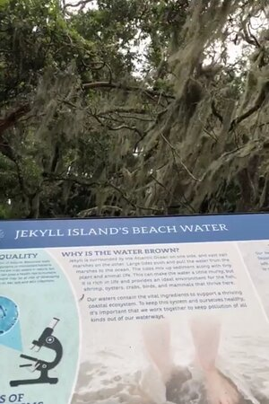 facts about the color of the water at St. Andrew Beach