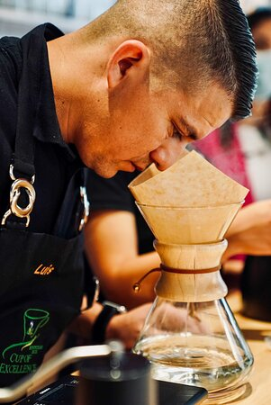 Luis Alvarado, a National Cup of Excellence Judge in Honduras,  beginning cupping weekly session.