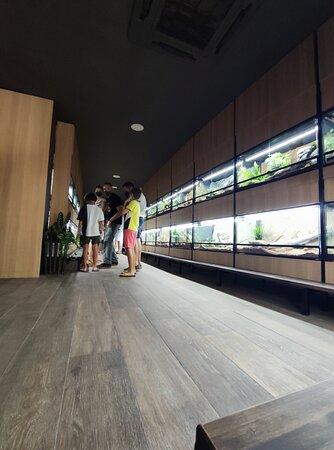 Exposición interior