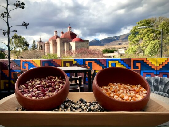 San Pablo Villa de Mitla, Mexiko: Maices nativos de:  - Morado de San Marcos Tlapazola - Rojo de San Lucas Quiavini - Amarillo de Union Zapata