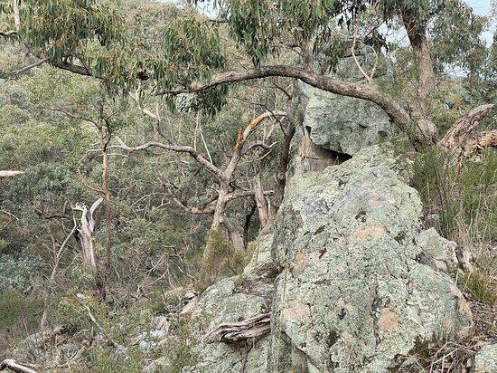 Viewing Rock
