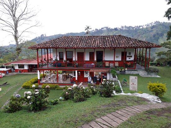 פריירה, קולומביה: Do you want to know the step by step process of a specialty coffee?  Come and sow, harvest, pulp, select and roast yourself on our Coffee tour!  