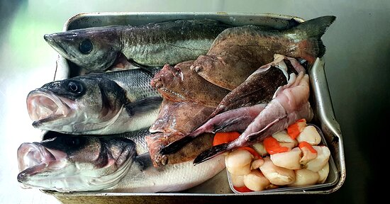 Daily locally sourced Catch.