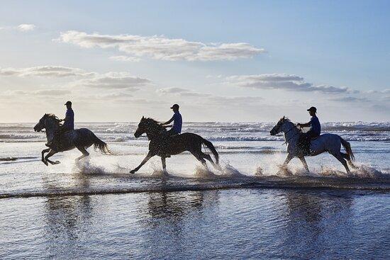 Equestrian Club