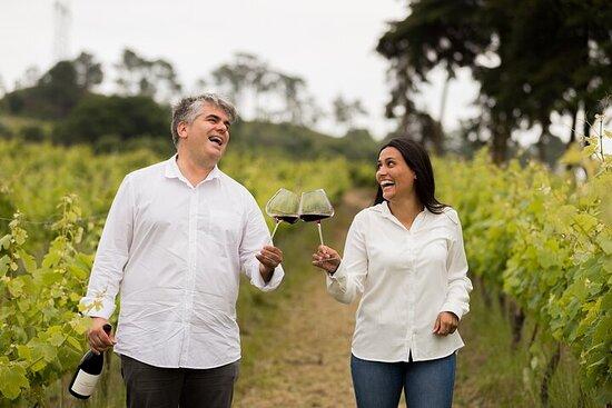 Tour privato a Torres Vedras con degustazione di vini