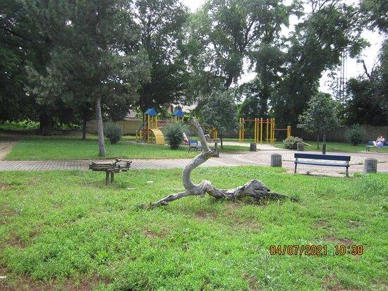 Generation Park