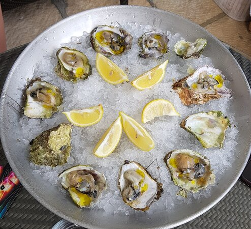 Oysters are delightful bite of pure ocean flavour. Try some Adriatic oysters!