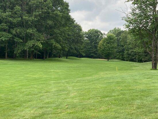 Village Green Golf Club