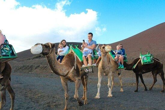 Camel ride in timanfaya national park
