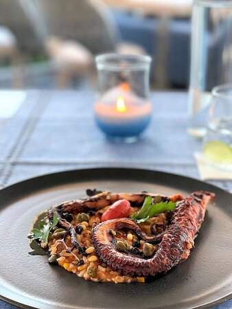 Modern Greek Dining Main Course Octopus from Ionian Sea (Stewed Octopus, Puree of Tomato Risotto, Marinated Dried Grapes, Toasted Pine Nuts)