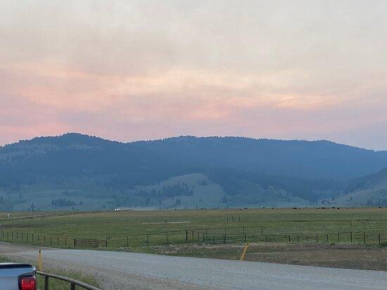 Meadow Vue Ranch