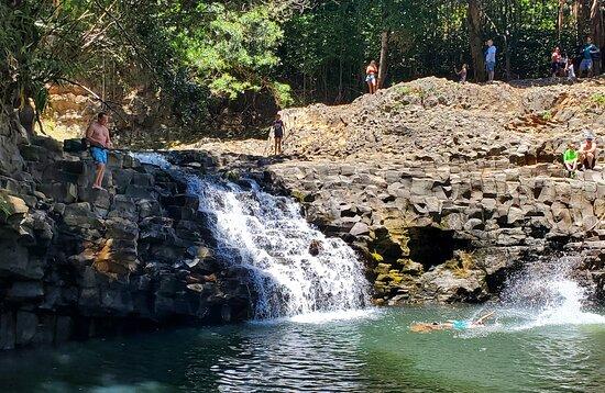 תמונה מWaterfall & Rainforest Hiking Adventure