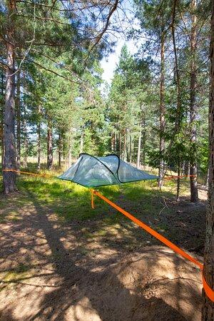 Tree tent by Telemarkskanalen.