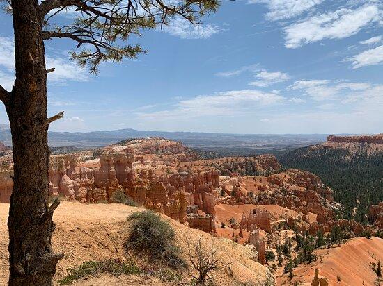 תמונה מZion and Bryce Canyon National Parks Small Group Tour from Las Vegas