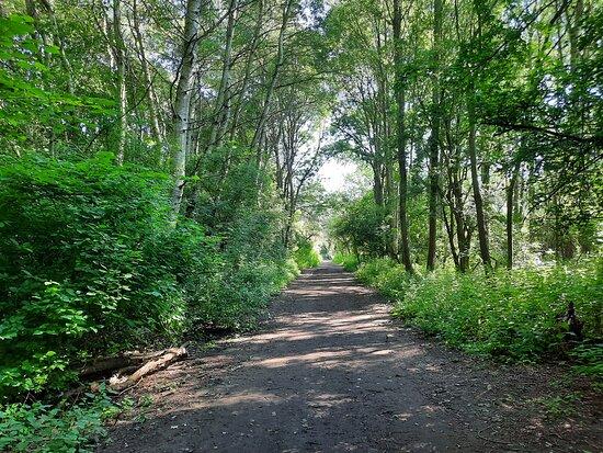 The Old Thrapston To Thorpe Rail Walk