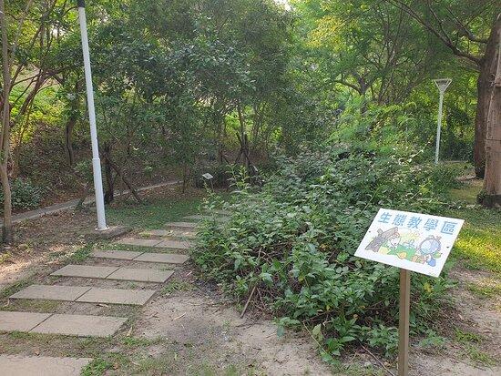 Wen-Xin Forest Park