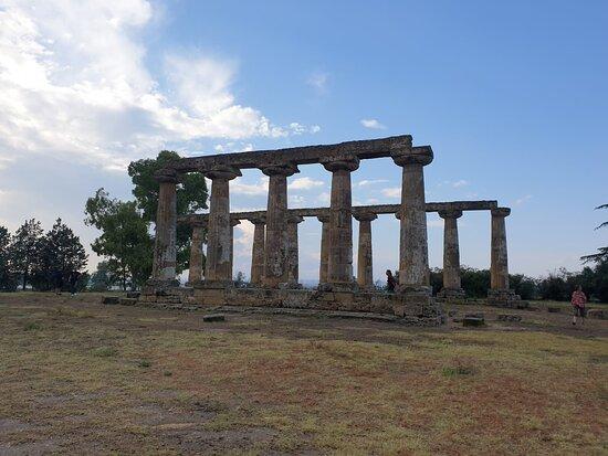 Tavole Palatine - Tempio di Hera