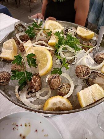 ostriche e tartufi di mare