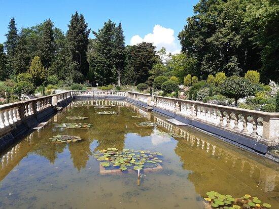The Forgotten Gardens of Easton Lodge