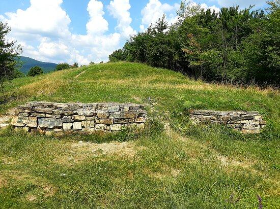 Dacian Fortress