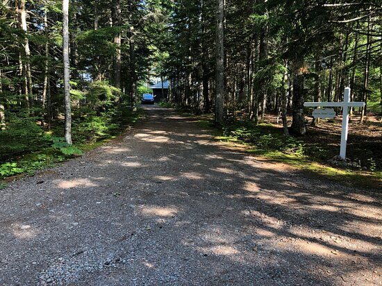 Private driveway to cottage.