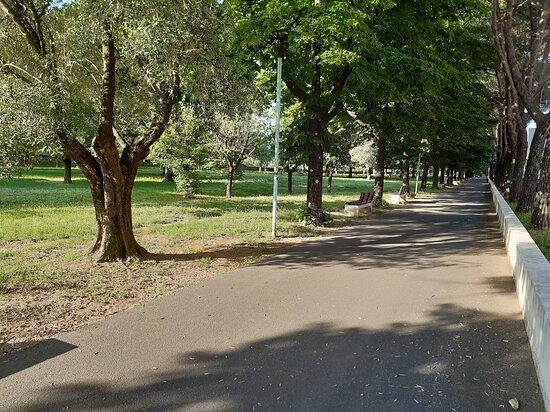 Giardini di Viale Galilei