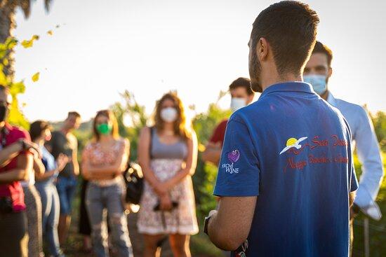Azienda Agricola Furchì Wine