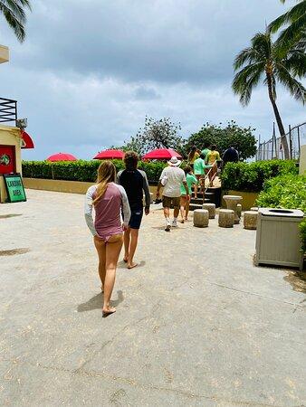 תמונה מSurfing Lessons On Waikiki Beach