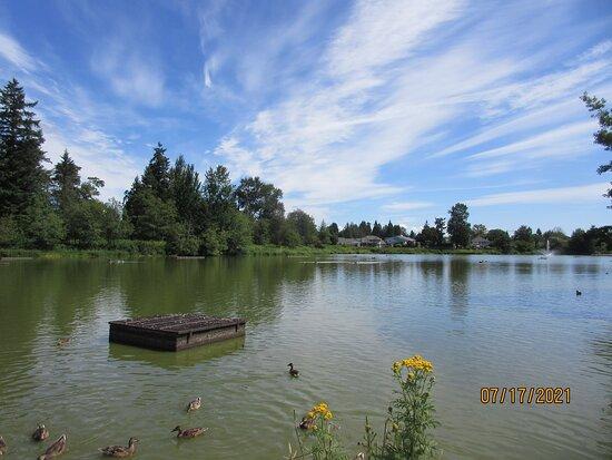 Brydon Lagoon