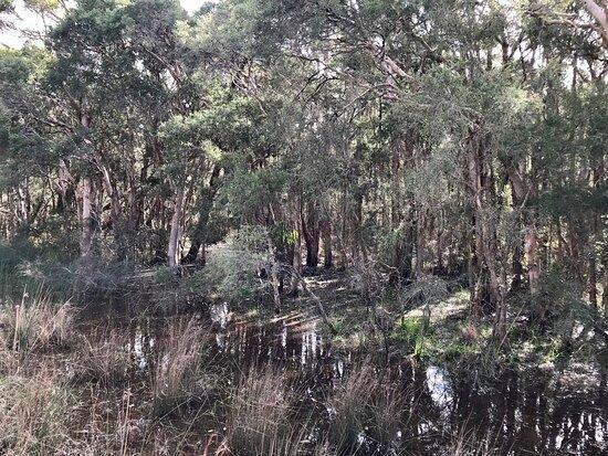 Gir-um-bit National Park