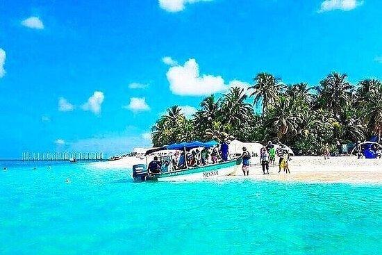 Tour a Johnny Cay e Acquario con Mangrovie a San Andrés