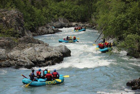 Nova Alaska Guides