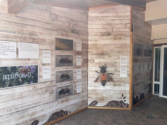 Apithano Honey Museum-Tasting & Tours