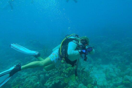 Half Day Private VIP Scuba Diving - 2 Tank Dive