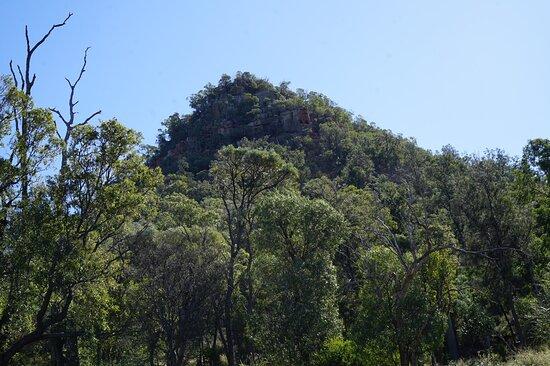 Fotografia de Região de Brisbane