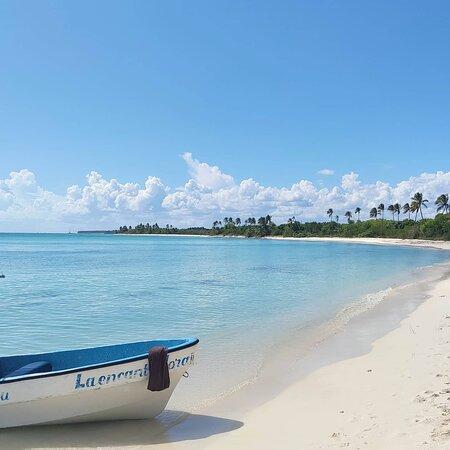 isola Saona, playa del canto. Foto e filmati  dal drone regalati da Franconero – Bild von Franconero Escursioni, Dominikanische Republik - Tripadvisor