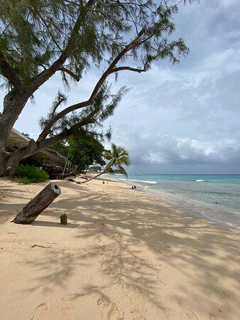 Beach - Picture of Lone Star Restaurant, Barbados - Tripadvisor