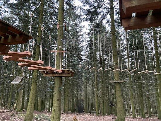 Hochseilgarten Hurtgenwald