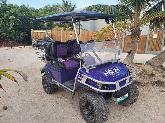 MK Golf Cart Rental