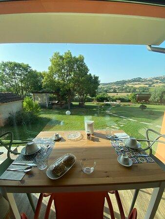 Tripadvisor - Il giardino - صورة B&B Bellafiora، Osimo