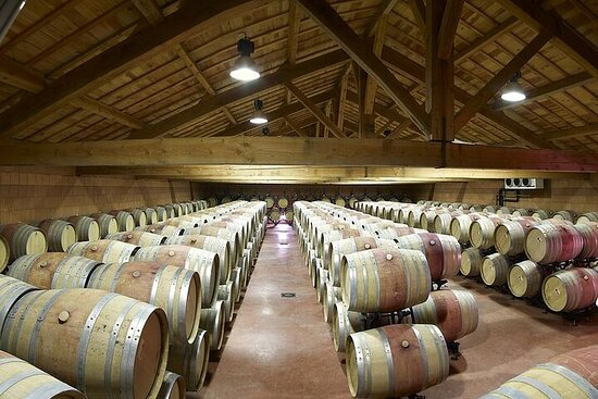 Half-Day Cotes du Rhone Private Wine Tour from Lyon