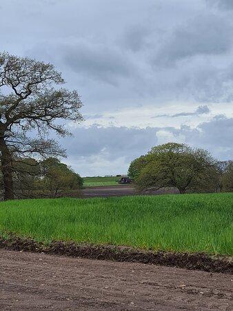 Welltrough Hall Farm