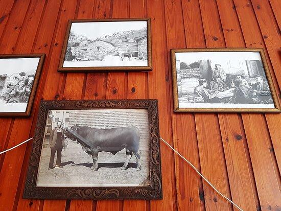Fotos antiguas decorando las paredes del local.