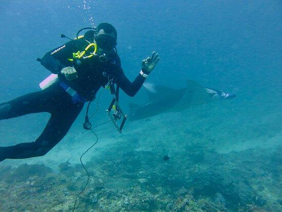 Blue Flow Diving